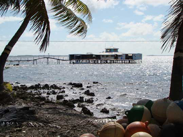 Ferme perliere de tahiti