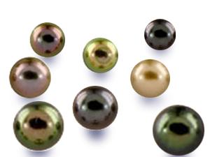 Varietes de teintes et d'orients des perles de culture de tahiti