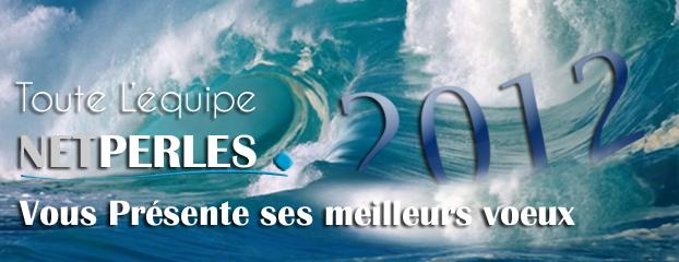 Toute l'equipe NETPERLES est heureuse de presenter ses meilleurs voeux pour la nouvelle annee 2012