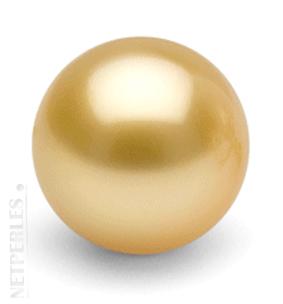 Perle Doree, perle des mers du Sud