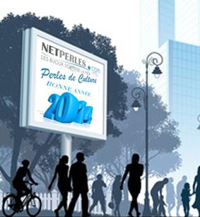 Meilleurs voeux 2014 de la part de toute l'equipe NETPERLES