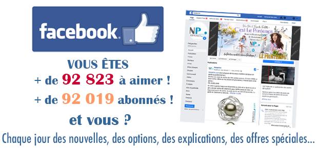 La page NETPERLES-FACEBOOK a été ouverte pour vous...